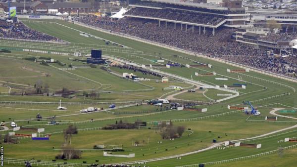 cheltenham-festival-racecourse