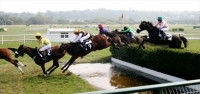 jumps-horse-racing